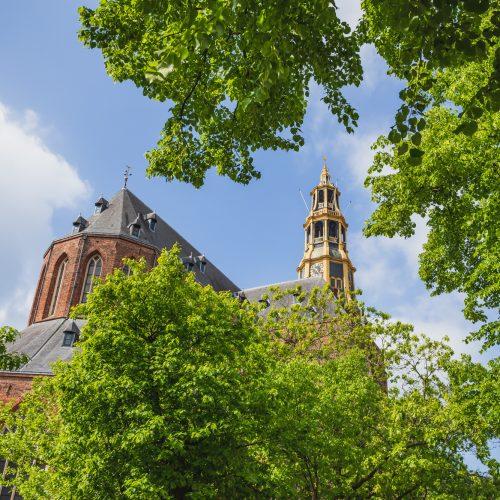 Der Aa-Kerk Groningen - Diepzeekonijn